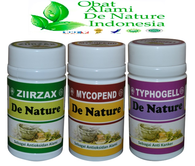 Obat kanker rahim herbal dan makanan pencegahnya - Obat ...